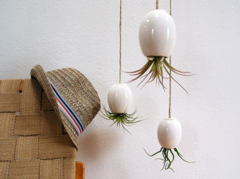 awesome-hanging-plants-upside-down-582x436