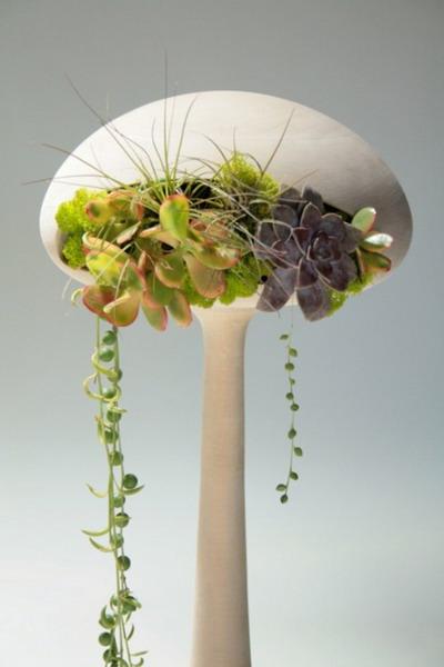 cool-look-for-indoor-plants