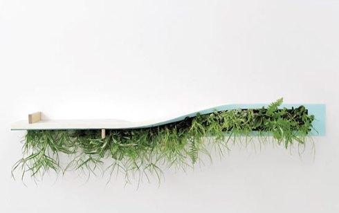 creative-way-to-display-plants