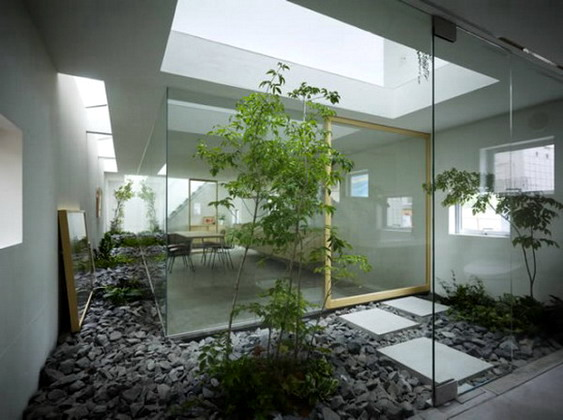Indoor-Landscape-ideas-skylight-582x435