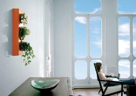 living-room-flower-box