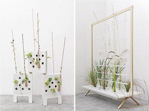 modern-display-pots-for-indoor-plants