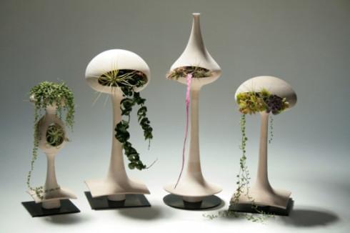 modern-plant-display