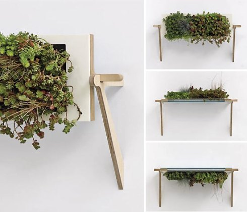 super-modern-and-creative-plant-displays