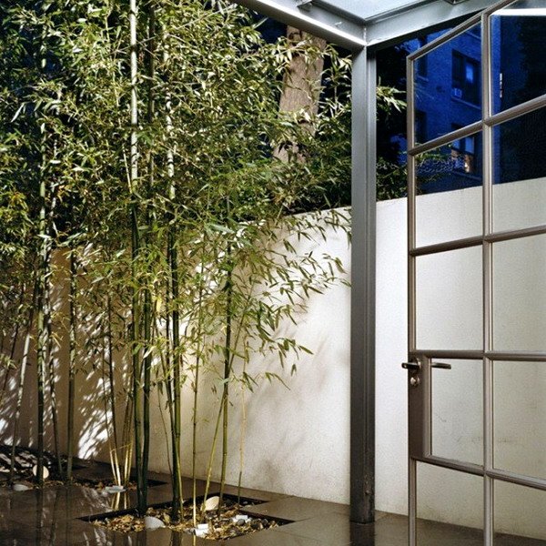 urban-garden-w-tiled-floor-and-bamboo1-665x677