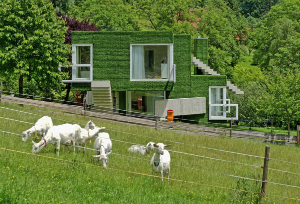 Single-family-home-in-Frohnleiten-6