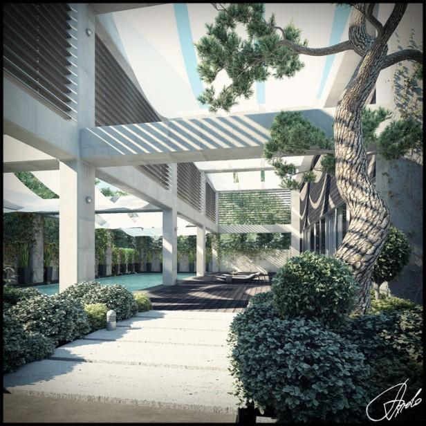 01 zen-garden-trees