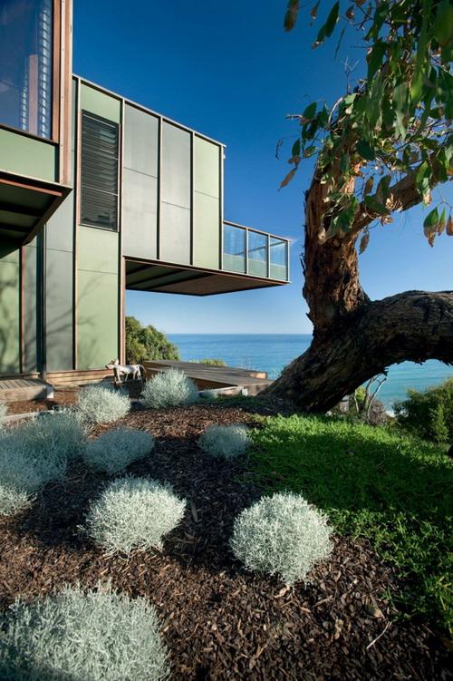 Tree-House-05-732x1100