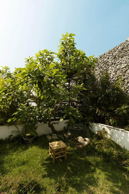 7._roof_garden